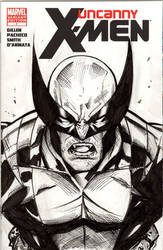 Wolverine sketchcover by Csyeung
