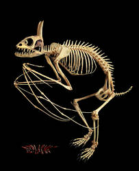 Bones by ozplasmic