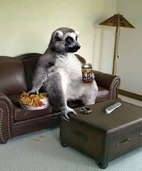 Wally the Lemur by ozplasmic