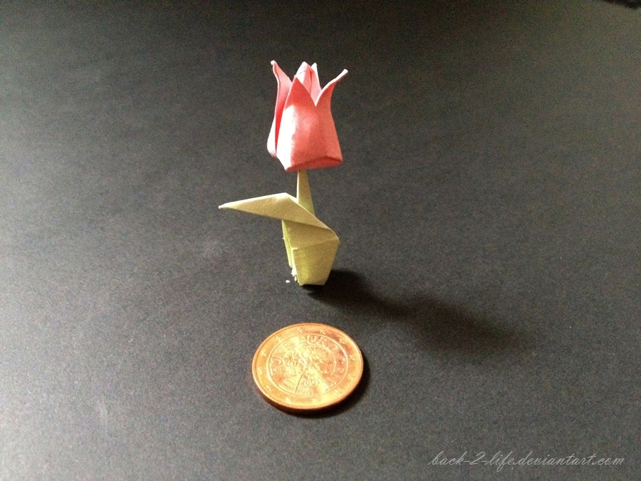 tiny tulip by Back-2-Life