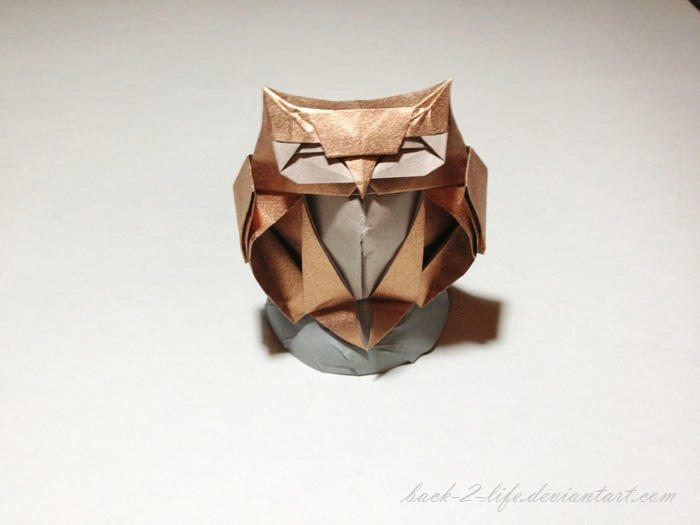 How to Make an Origami Owl Step by Step Instructions | Free ... | 525x700