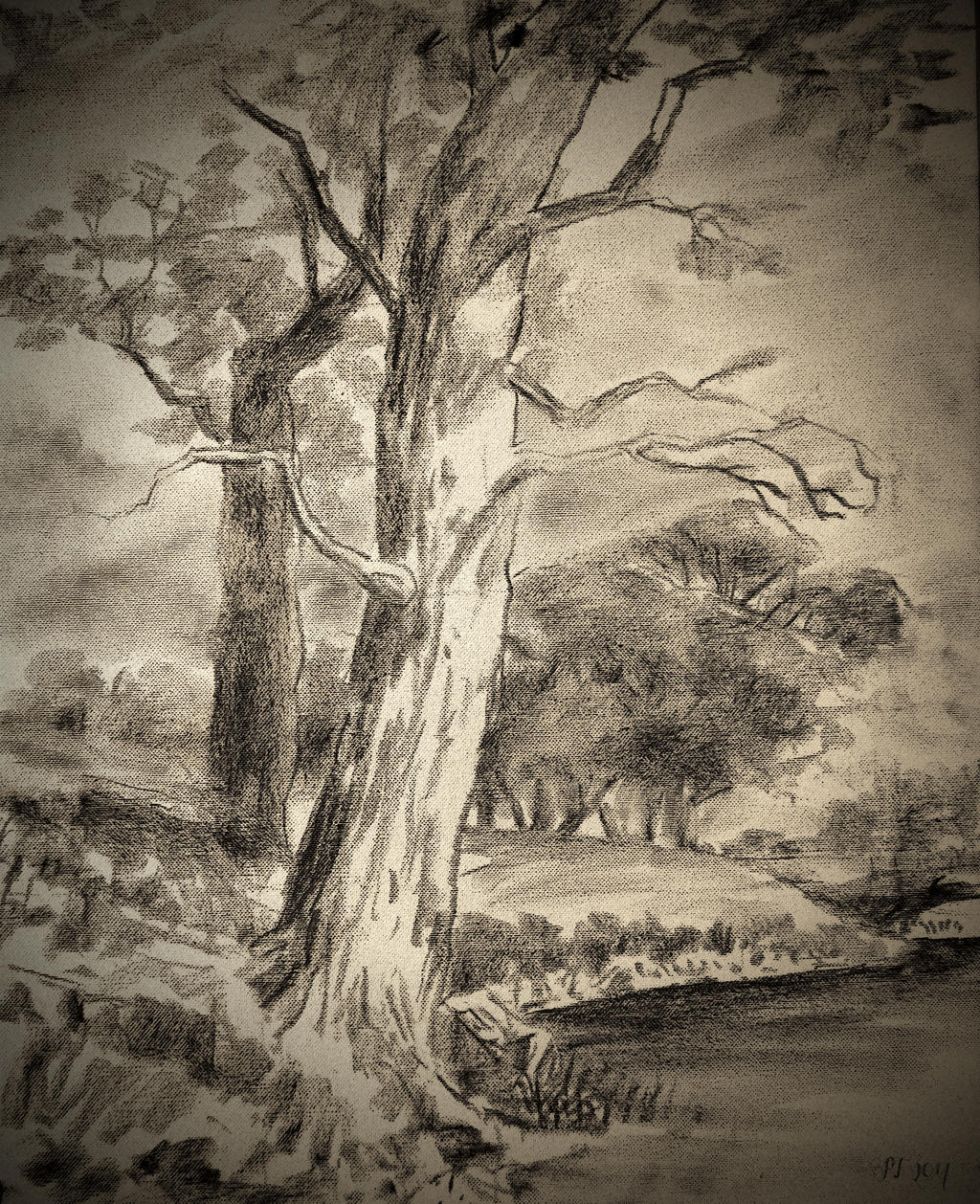 Charcoal sketch by Boias