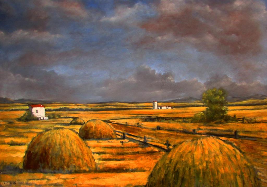 Hayfields by Boias