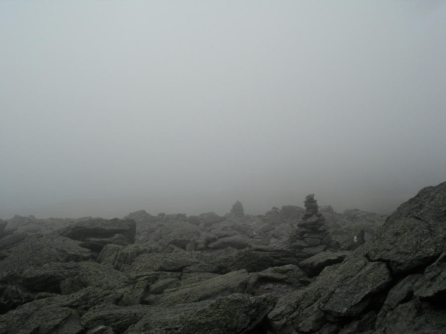 Into the Fog by Rakkety