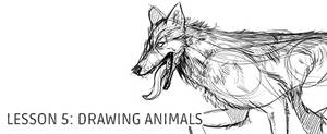 Lesson 5: Drawing Animals