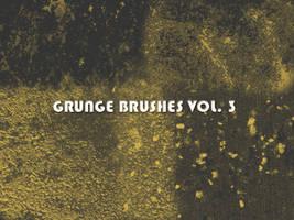 Grunge Brushes Vol. 3 by xara24
