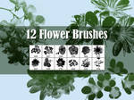 12 Flowers Brushes