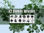 12 Flowers Brushes