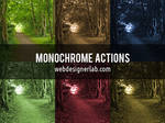 Monochrome Photoshop Actions
