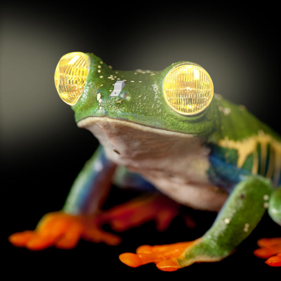Attractive Frog Lamp By Ondori Kun ...