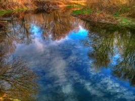 Reflection by butenkof