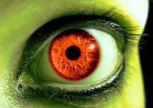 Eye of a dragon