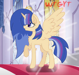 Princess Army Sharelight by MineHyljeDeviantArt