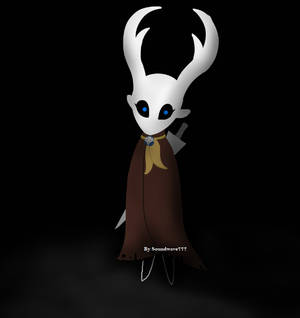 Hollow Knight: Self Depiction.