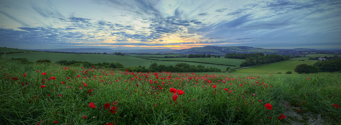 Red Dots by wreck-photography