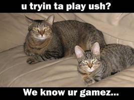 No gamez...