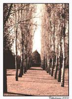 Walkway to Hope by SteavieLea