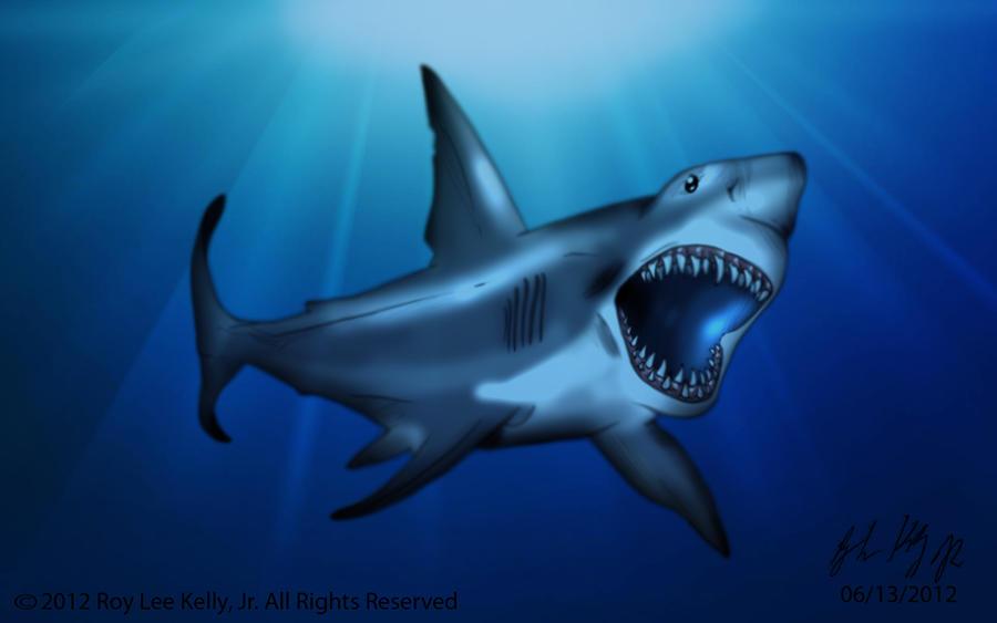 Great White Shark by BlackPicasso1989 on deviantART | 900 x 563 jpeg 50kB