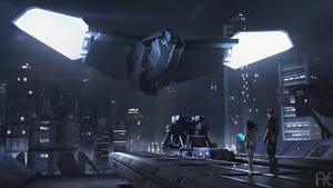 SimRa - Raven landing by adamkuczek