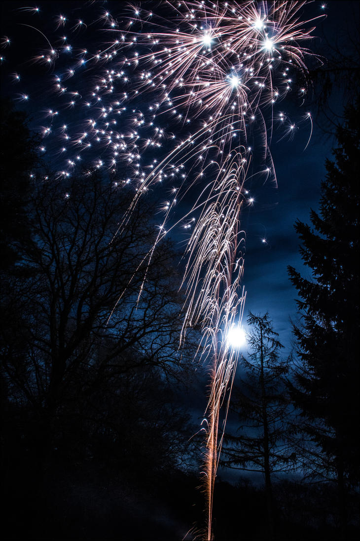 Checkin' out some Firework by db-photoblogDOTcom
