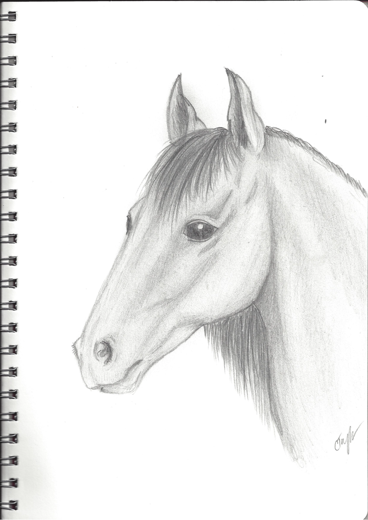 Show off your drawing skills!! Horse_sketch_by_cayfie-d75i5vv