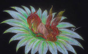 ~Warm Floral Glow~ .:DTA Entry:. by cayfie