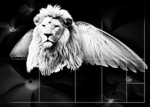 Lion Designs Layout