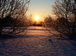 Sunrise by imokurnot