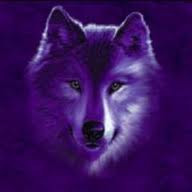 Ice Wolf With Wings purple wolf by baltohe...