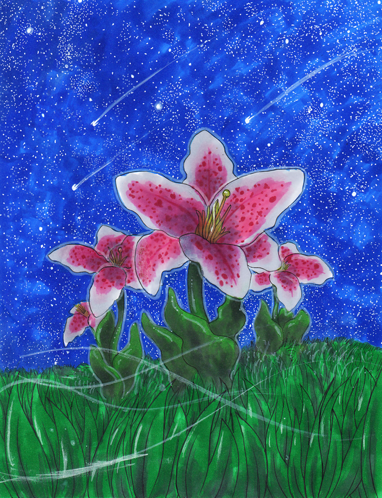 Stargazing Lillies by matsuyama-takeshi