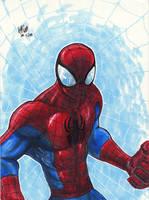 Spiderman Colour 2 by Pixelated-Takkun
