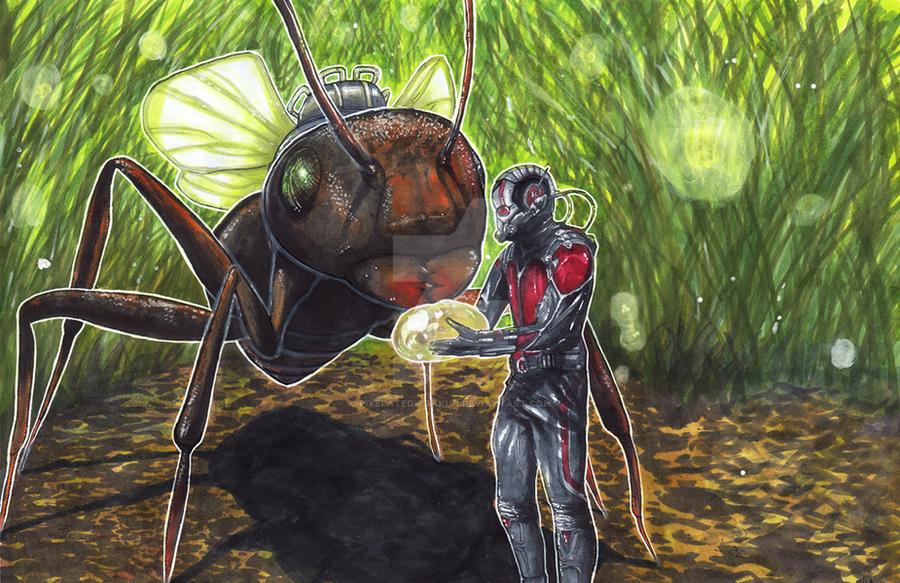 Antman and Antony by matsuyama-takeshi