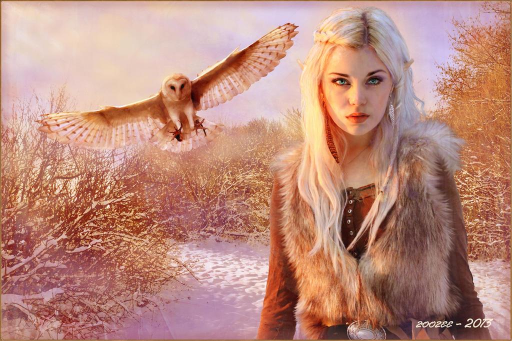 Nordic Elf Princess by zoozee