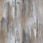 Ugly Worn Plywood Craigo