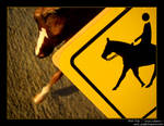 Caution: Horse Crossing