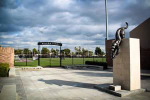 Wilson Field