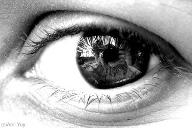 Pupil or Lens? by amiyuy