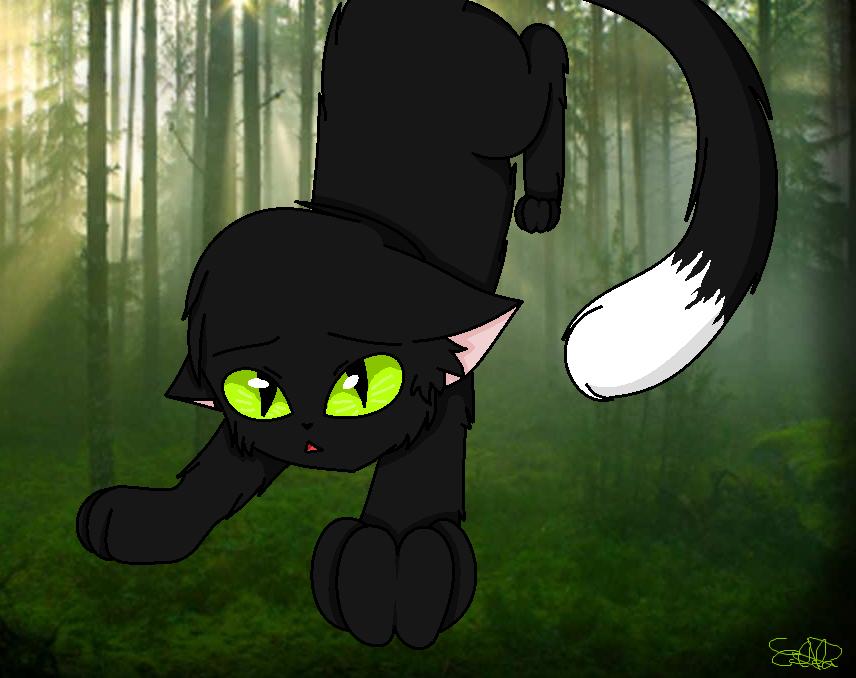 Los gatos guerrerosCuervo by EddaAkatsukiller