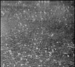 rain by devilicious