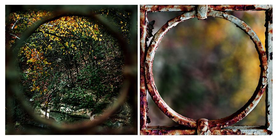 bi focals in bloom by devilicious