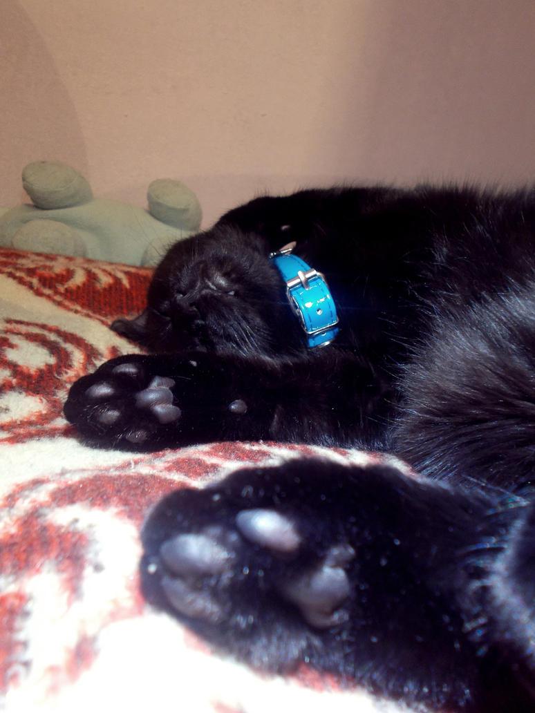 Lucky cat #3 by MustSleep27