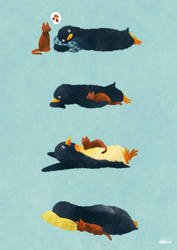 Sleeping with Cat