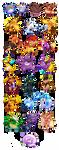 Pokemissions by vaporotem