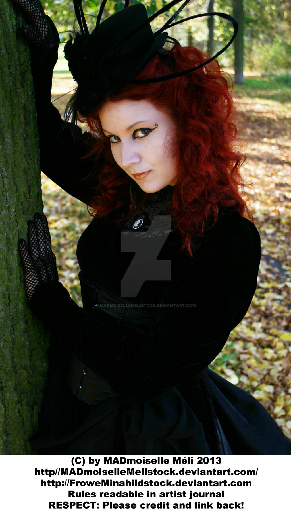 Victorian Gothic Stock Lady 001 by MADmoiselleMeliStock