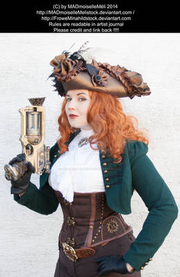 Steampunk Pirate Stock 003