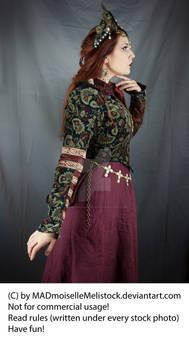 Medieval Fantasy Priestress Stock 004