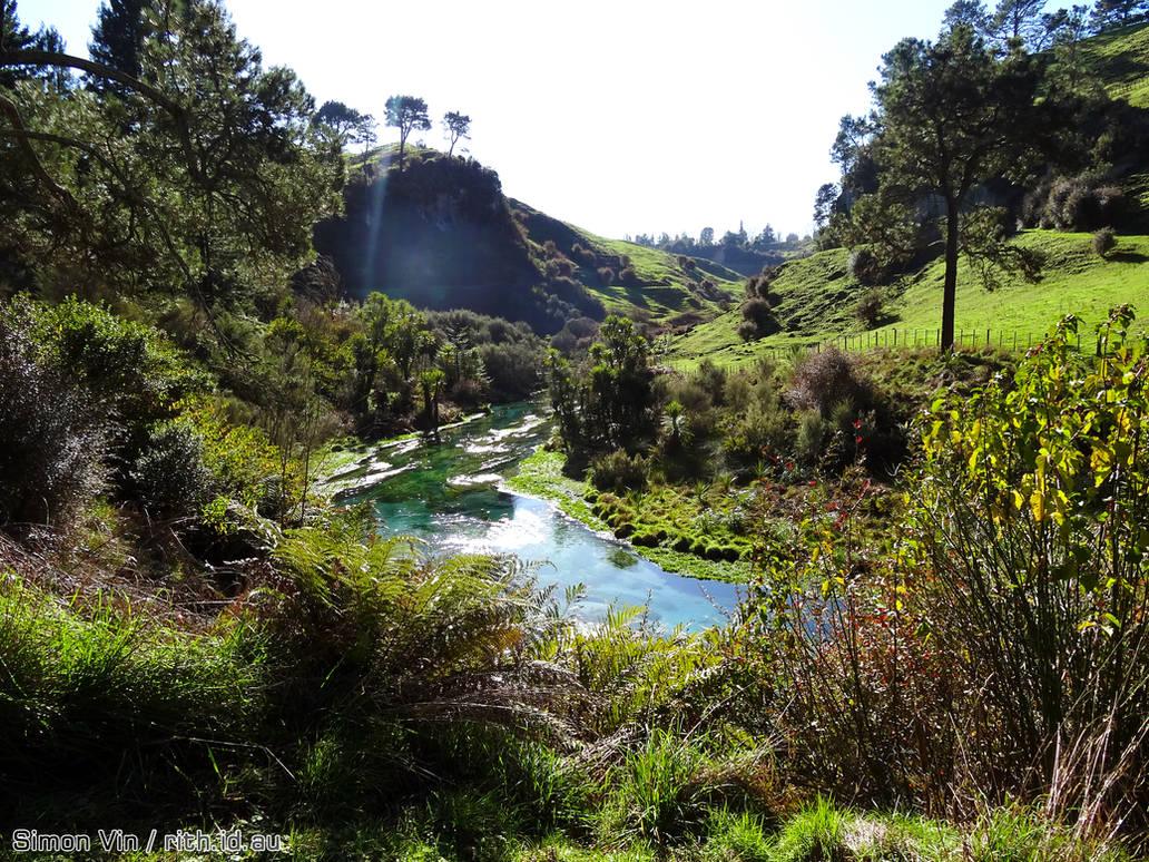 Te Waihou Blue Spring