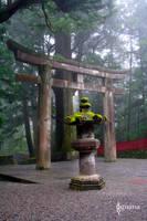 Zen in Japan