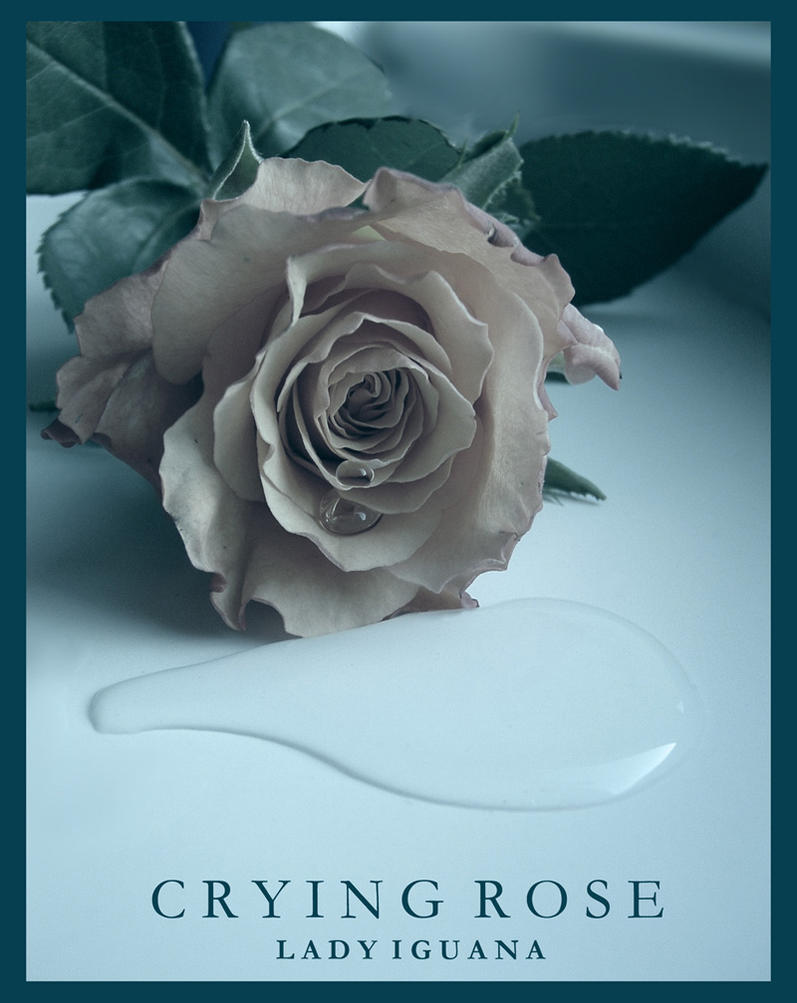 Crying Rose by lady-iguana
