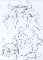 Anatomy studies: male back